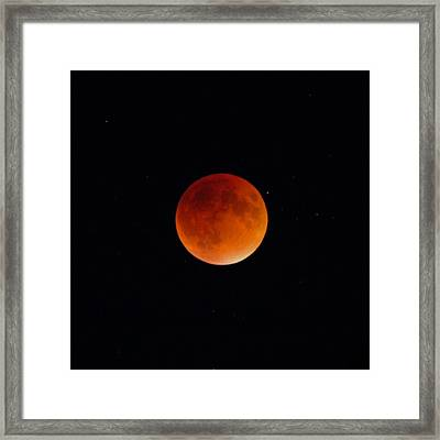 Blood Moon 2 Framed Print by Cathie Douglas
