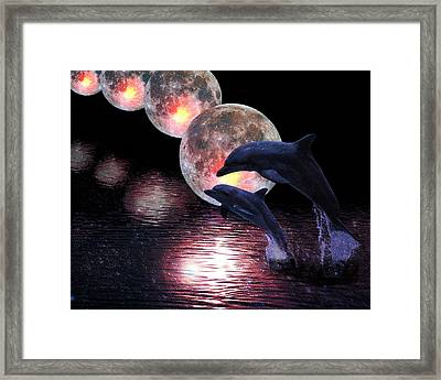 Dolphins In The Moonlight Framed Print