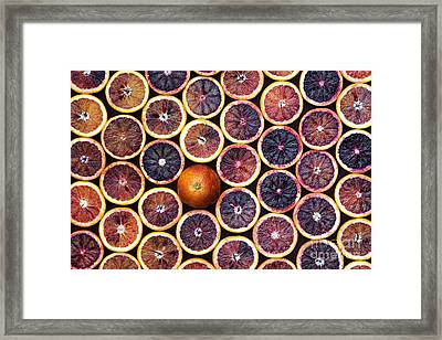 Blood Oranges Framed Print by Tim Gainey