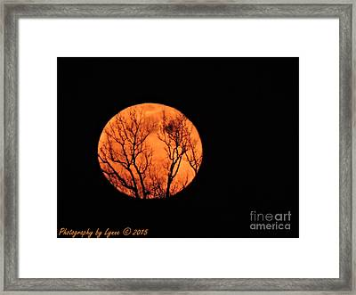 Blood Red Moon Framed Print