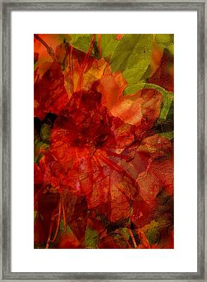 Framed Print featuring the digital art Blood Rose by Tom Romeo