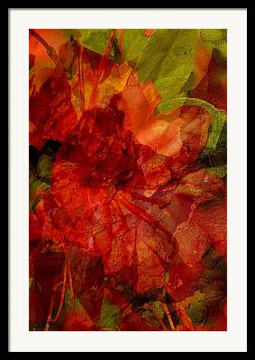 Floral Digital Art Digital Art Framed Prints