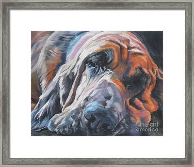 Bloodhound Sleeping Framed Print by Lee Ann Shepard