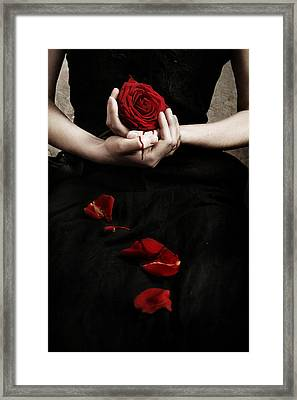 Bloody Rose Framed Print by Cambion Art