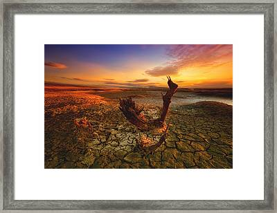 Bloody Sunset Framed Print by Piotr Krol (bax)