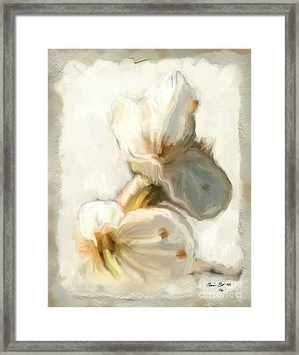 Bloom Three Framed Print by Carrie Joy Byrnes
