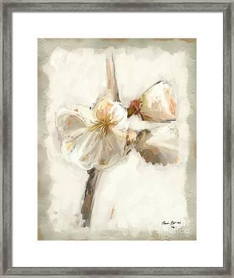 Bloom Two Framed Print by Carrie Joy Byrnes