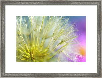 Bloomed II Framed Print