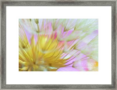 Bloomed Framed Print