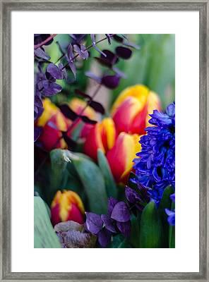 Bloomin' Spring Framed Print