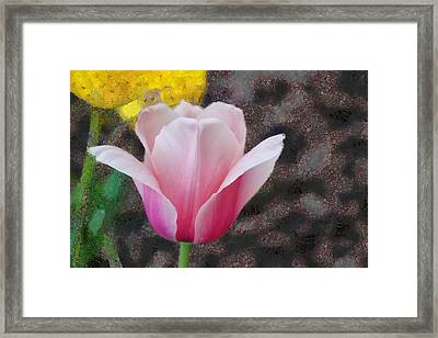 Framed Print featuring the mixed media Bloomin' by Trish Tritz