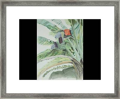 Framed Print featuring the painting Blooming Banana by Hilda and Jose Garrancho