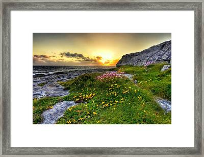 Blooming Burren Framed Print
