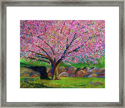 Blooming Crabapple In Evening Light Framed Print