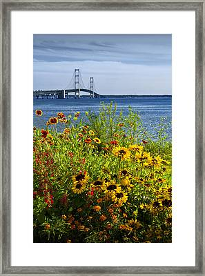 Blooming Flowers By The Bridge At The Straits Of Mackinac Framed Print by Randall Nyhof
