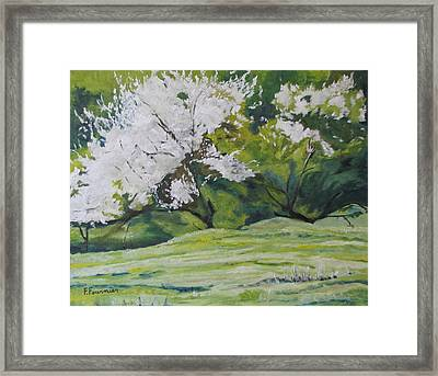 Blooming Framed Print by Francois Fournier
