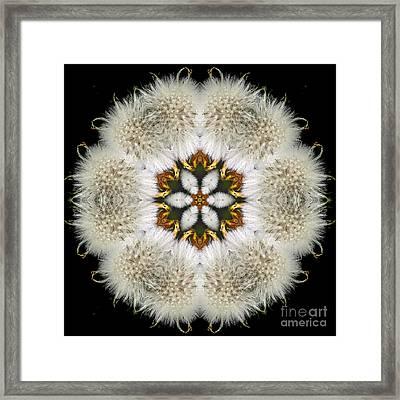 Blooming Heather Framed Print by Rhonda Strickland