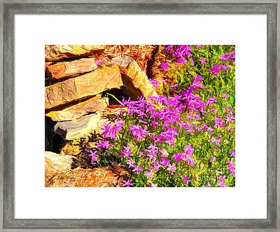 Blooming Framed Print by Judy  Waller