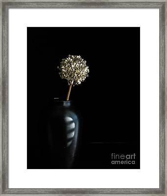 Blooming Onion Framed Print