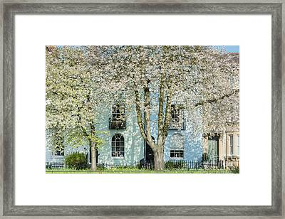 Framed Print featuring the photograph Blooming Oxford by Tim Gainey