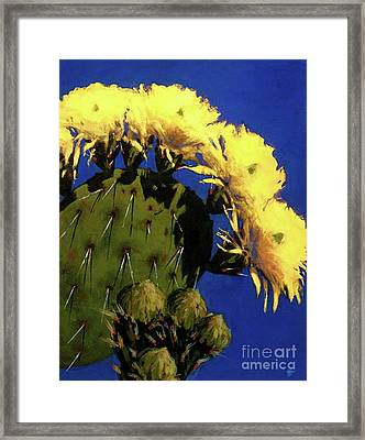 Blooming Prickly Pear Framed Print