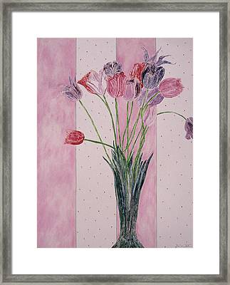 Blooming Tulip Colors Framed Print