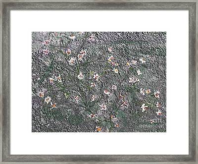 Blooms In Stone Framed Print
