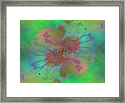 Blooms In The Mist Framed Print