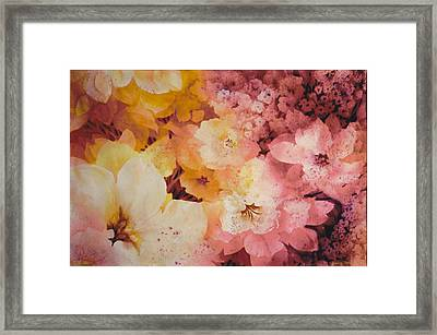 Blooms-of-summer Framed Print by Nancy Newman