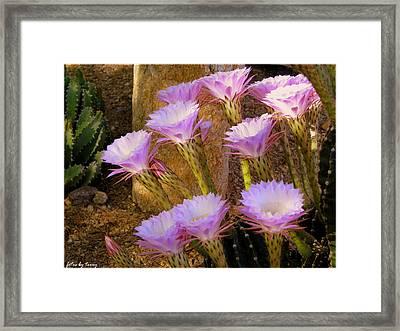 Blossom Forth Framed Print