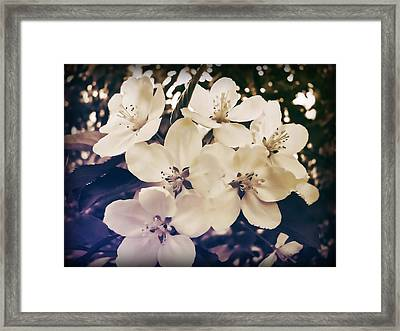Blossom Framed Print by JAMART Photography