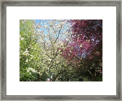 Framed Print featuring the painting Blossom Trio by Judith Desrosiers