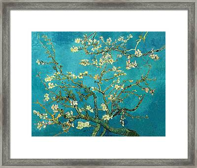 Framed Print featuring the painting Blossoming Almond Tree by Van Gogh