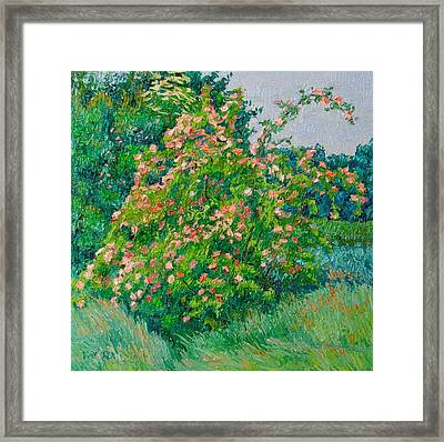 Blossoming Bush Landscape Framed Print by Vitali Komarov