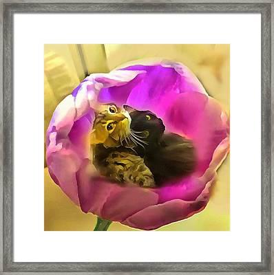 Blossoming Love Framed Print by Janet  Nielsen