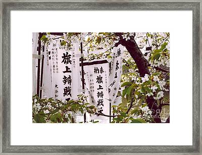Blossoms Framed Print by Andrea Simon