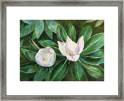 Blossoms In The Sunlight Framed Print
