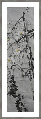 Blossoms Framed Print by Min Wang