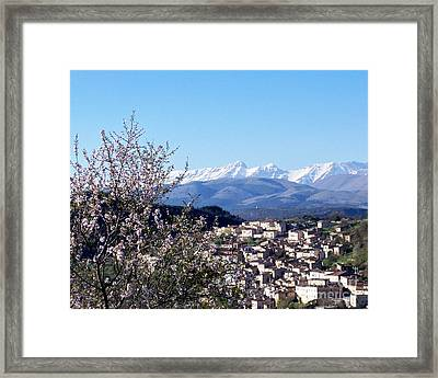 Framed Print featuring the photograph Blossoms With A View by Judy Kirouac