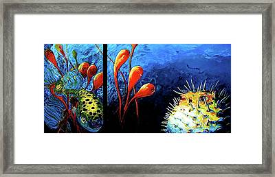 Blow Fish  Two Fish Framed Print