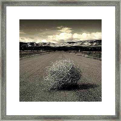 Blowin In The Wind.. Framed Print