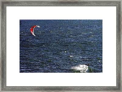 Blowing In The Wind Framed Print by David Lee Thompson