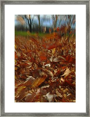 Blowing In The Wind Framed Print by Juergen Roth
