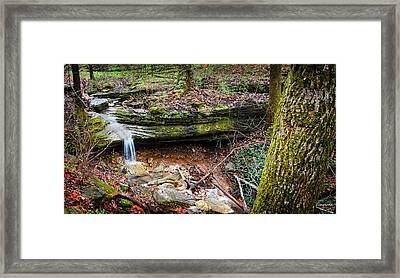 Blowing Springs Park Bella Vista Arkansas Framed Print by Lourry Legarde