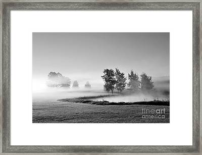 Framed Print featuring the photograph Blown Away by Terri Gostola