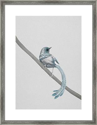 Blue 2 Framed Print