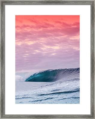 Blue Almond. Framed Print by Sean Davey