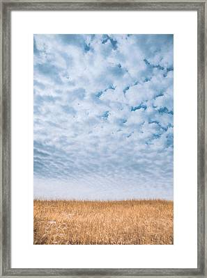 Blue And Amber Framed Print