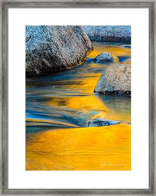 Blue And Gold 0557 Framed Print by Dan Beauvais