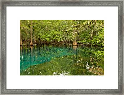 Blue And Green Waters At Manatee Framed Print by Adam Jewell
